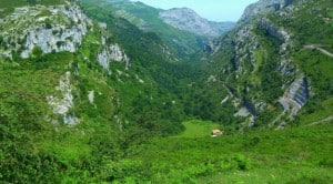13_Parque-Natural-Collados-de-Ason-Cantabria_67